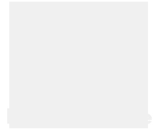 VW Nutzfahrzeuge Icon